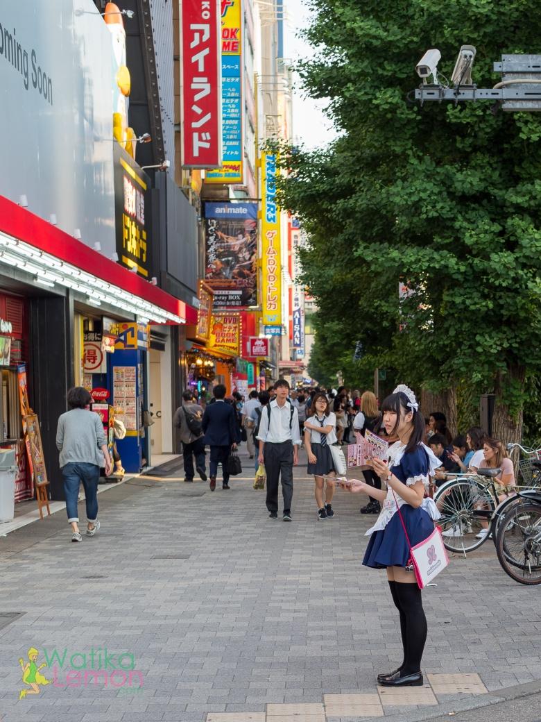 Akihabara Maid.jpg