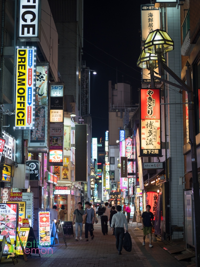 Kabukicho Nights.jpg