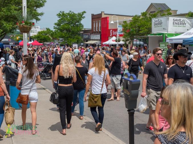 Buttertart Festival Midland-13